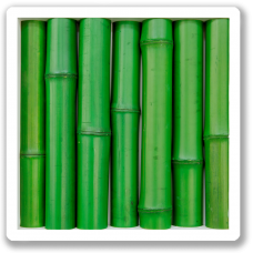 wanddekoration-wallapp-wood-bamboo-green-001