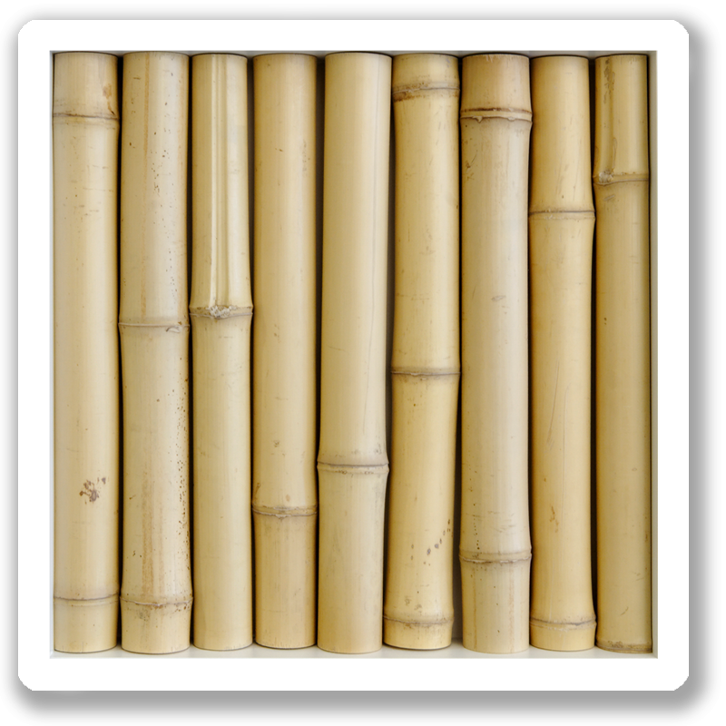 wanddekoration-wallapp-wood-bamboo-yellow-001